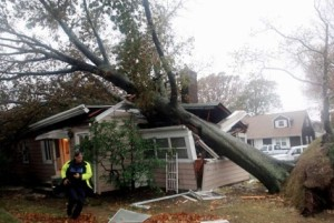 wind.damage